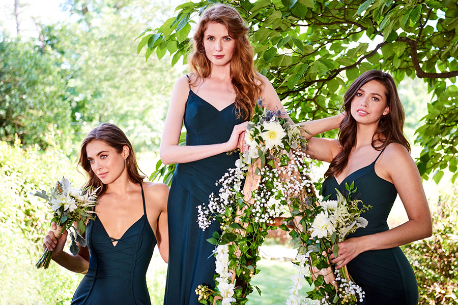 Bridesmaids on Ladder